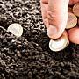 Бизнес с доходом: что надо делать