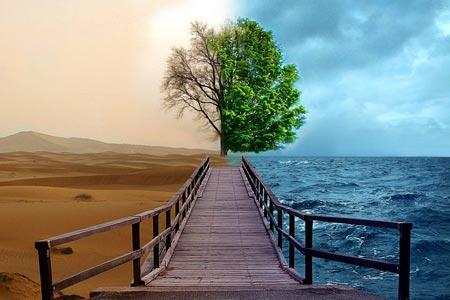Климат и сад