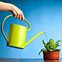 Живая вода для растений