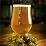 Пиво против простуды