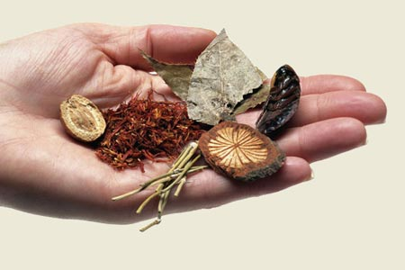 Биологически активные вещества растений