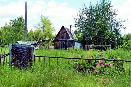 Заработок на заброшенных садовых участках