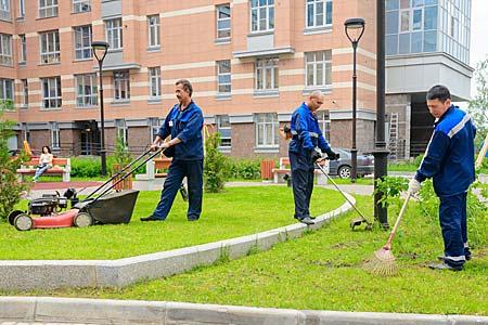 Услуги по уборке двора